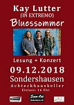 BLUESSOMMER – Musikalische Lesung (Foto: Christian Thiel)